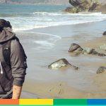 Mattia Caracciolo, il social media artist italiano che vuole conquistare gli Usa… con i pesci