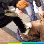 Studente picchiato: aggressione omofoba a Firenze