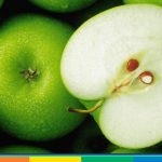 """In cucina con l'arcobaleno, ricetta """"in verde"""": insalata di mela e avocado"""