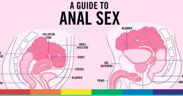 anale sesso guida vecchio sedurre giovane lesbica